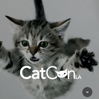catconLA dailykif