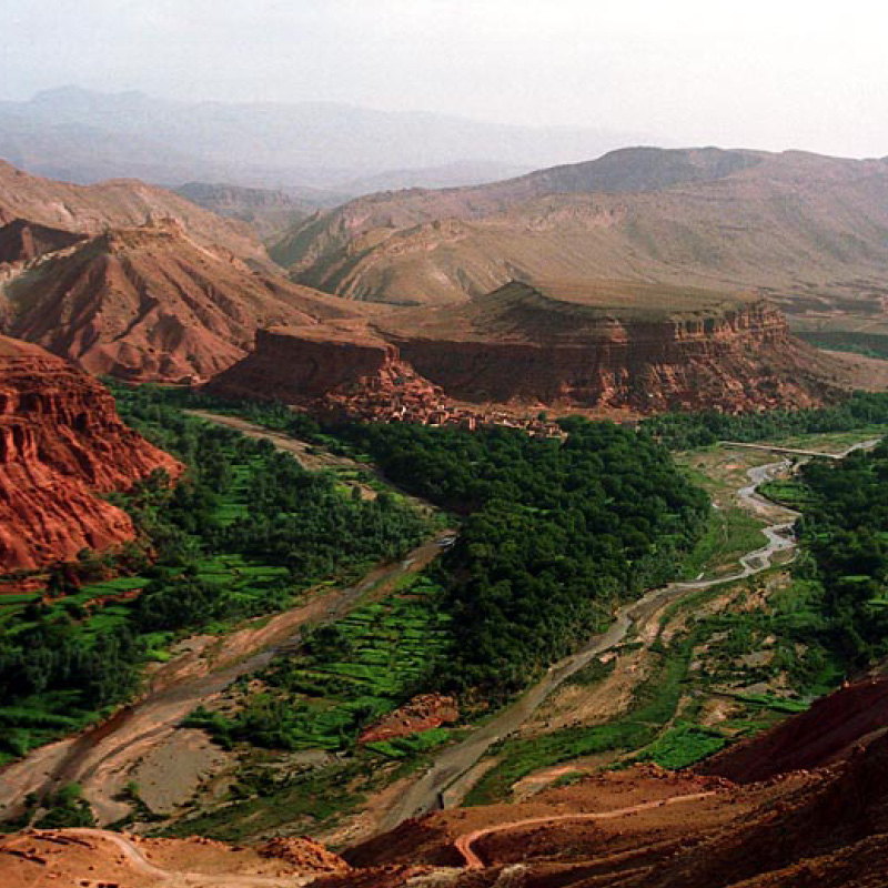 La Vallée des Roses au Maroc - Source zagoraexpedition.com