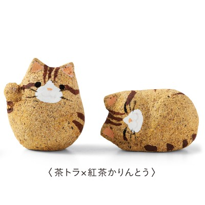Fortune Cookie chat biscuit japon japonais daily kif 03