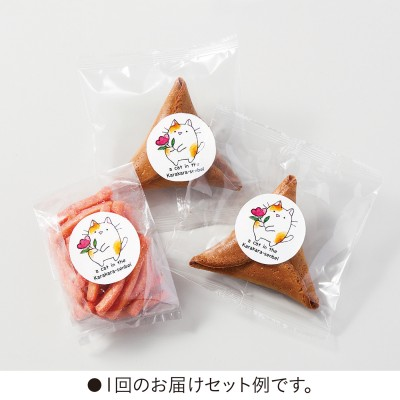 Fortune Cookie chat biscuit japon japonais daily kif 06