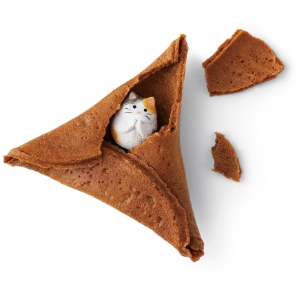 Fortune Cookie chat biscuit japon japonais daily kif