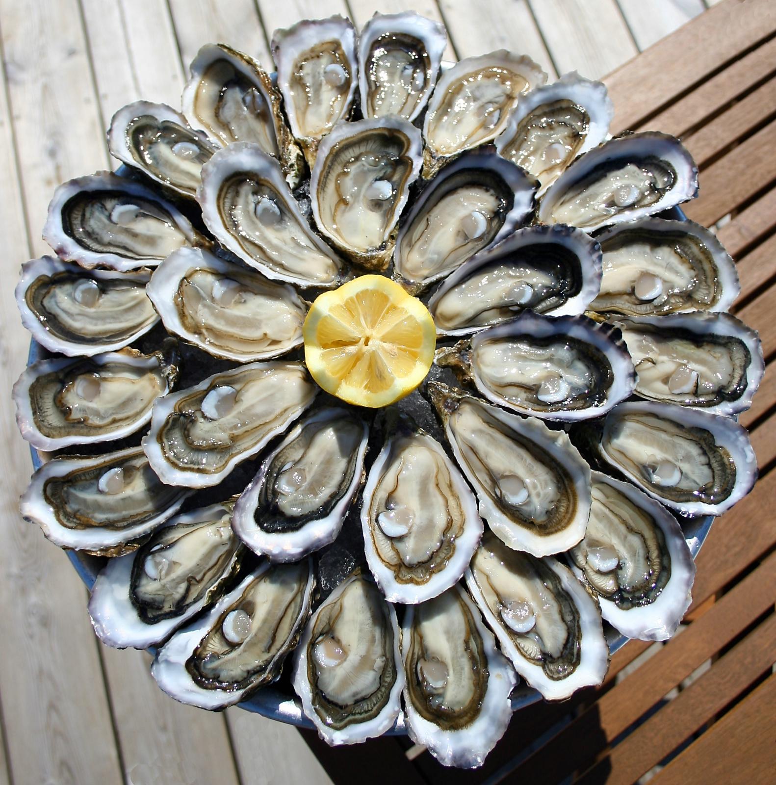 Vente d'huîtres de Cancale en ligne - Huîtres A. Prod'homme Cancale